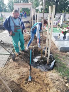 Výsadba stromů podzim 2020